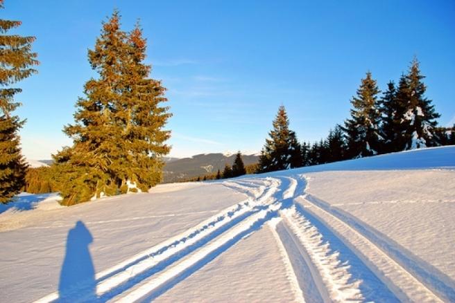 partie-ski-stana-de-vale